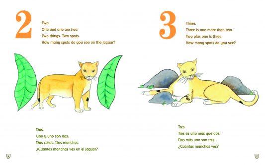 Effective Books for Bilingual Preschool Curriculum