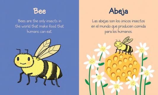Books For Hispanic Spanish Speaking Parents